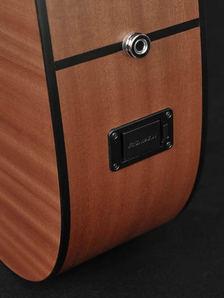 Richwood D-20-CE western guitar