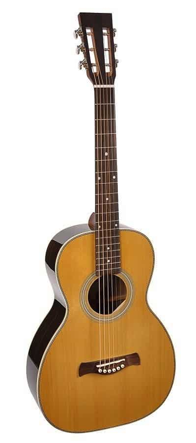 Richwood P-65-VA guitar