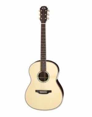 Aria MSG-05-N Top akustisk guitar
