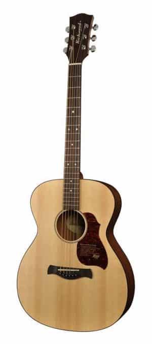 Richwood A-20-E western guitar