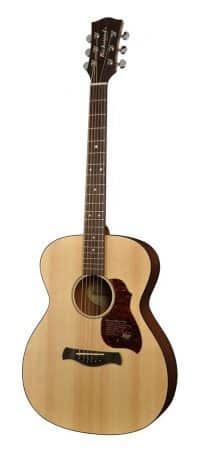 Richwood A-20 guitar