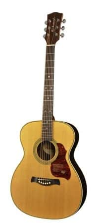 Richwood A-65-VA guitar