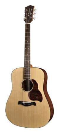 Richwood D-20 guitar