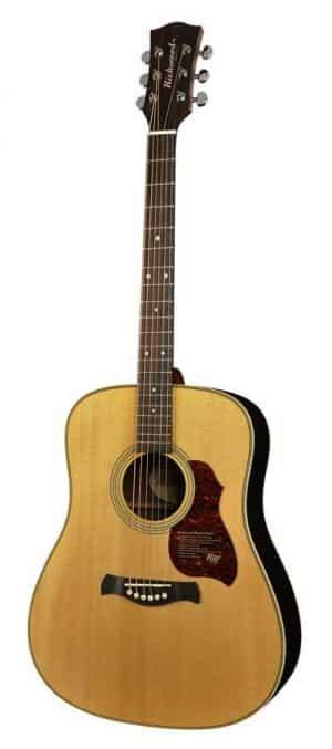 Richwood D-65-VA guitar