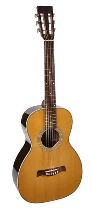 Richwood P-65-VA guitar