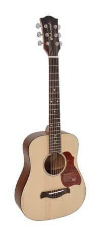 richwood t-20 traveller guitar